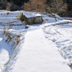 銀賞「雪の小道」 松木宣博