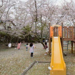 入選3「桜舞い散る」吉田美穂
